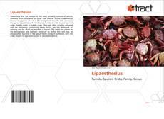 Borítókép a  Lipaesthesius - hoz