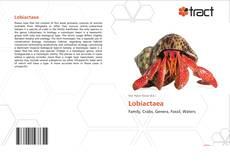 Borítókép a  Lobiactaea - hoz