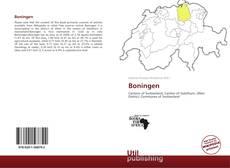 Portada del libro de Boningen