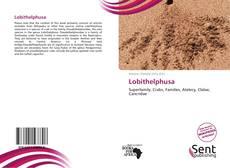 Bookcover of Lobithelphusa