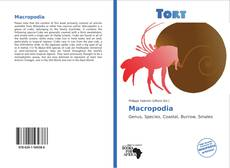 Bookcover of Macropodia