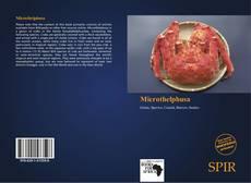 Borítókép a  Microthelphusa - hoz