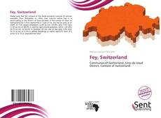 Capa do livro de Fey, Switzerland