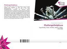 Borítókép a  Phallangothelphusa - hoz