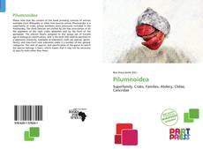 Обложка Pilumnoidea