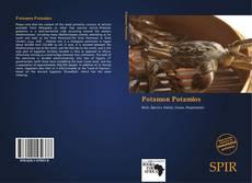 Buchcover von Potamon Potamios