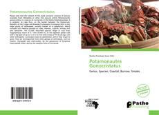Borítókép a  Potamonautes Gonocristatus - hoz