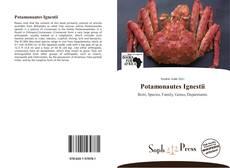 Copertina di Potamonautes Ignestii