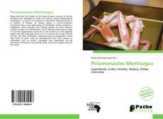 Bookcover of Potamonautes Montivagus