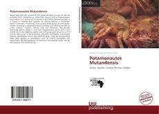 Copertina di Potamonautes Mutandensis