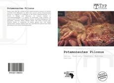 Bookcover of Potamonautes Pilosus