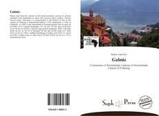 Buchcover von Galmiz