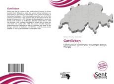 Bookcover of Gottlieben