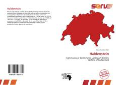 Bookcover of Haldenstein