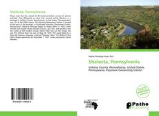 Bookcover of Shelocta, Pennsylvania