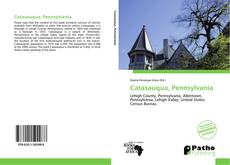 Bookcover of Catasauqua, Pennsylvania