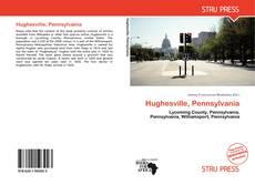 Bookcover of Hughesville, Pennsylvania