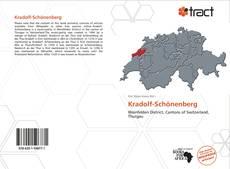 Kradolf-Schönenberg kitap kapağı