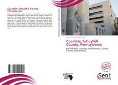 Coaldale, Schuylkill County, Pennsylvania kitap kapağı