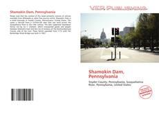 Shamokin Dam, Pennsylvania kitap kapağı