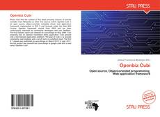 Bookcover of Openbiz Cubi