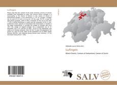 Capa do livro de Lufingen