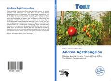 Capa do livro de Andrea Agathangelou