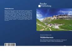 Capa do livro de Mühlethurnen
