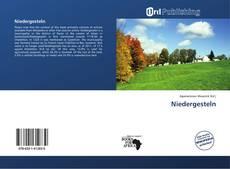 Bookcover of Niedergesteln