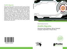 Buchcover von Andile Ngcaba