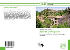 Portada del libro de Águeda Municipality