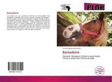 Bookcover of Baixadeiro