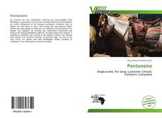 Bookcover of Pantaneiro