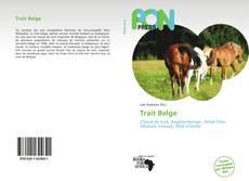 Bookcover of Trait Belge