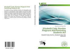 Bookcover of Elizabeth Cady Stanton Pregnant And Parenting Students Act