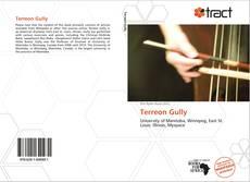 Terreon Gully的封面