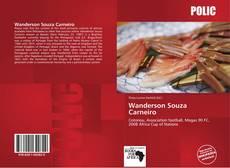 Bookcover of Wanderson Souza Carneiro