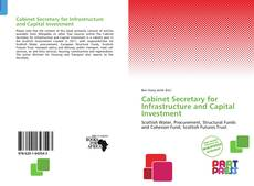 Обложка Cabinet Secretary for Infrastructure and Capital Investment
