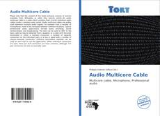 Bookcover of Audio Multicore Cable