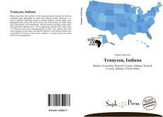 Tennyson, Indiana的封面