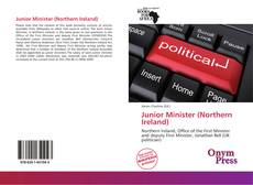 Capa do livro de Junior Minister (Northern Ireland)