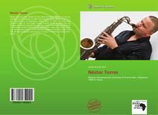Capa do livro de Néstor Torres