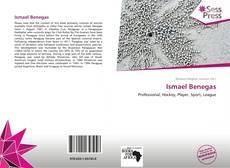 Portada del libro de Ismael Benegas