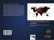 European Economic Interest Grouping的封面