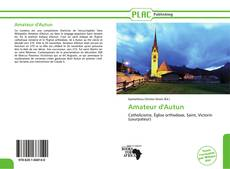 Couverture de Amateur d'Autun