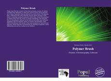 Bookcover of Polymer Brush