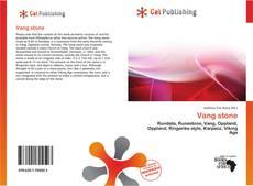 Buchcover von Vang stone