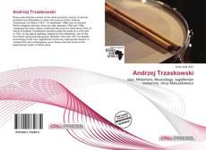 Andrzej Trzaskowski kitap kapağı