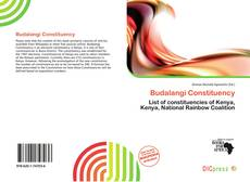 Bookcover of Budalangi Constituency
