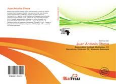 Bookcover of Juan Antonio Chesa